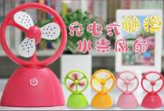 Charging touch fruit fan | Korean cute mini portable USB fan small fan | blending