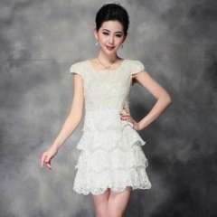 (Q13070) 2013 Europe summer new Heavy embroidered organza dress | a generation of fat