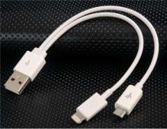 20 cm Cable With Micro USB & Dock Adapter for iPhone 5, iPad Mini, iPad 4, iPod Touch 5, iPod Nano 7 (White)