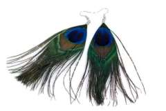 Peacock feathers, crafts