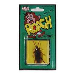 Tricky Toy Life-Like Cockroach