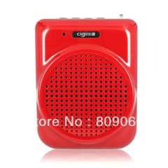 A817 Portable Amplifier, Supports FM Radio USB\T-flash Card Music Playing