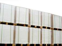 Single Side Coated Ivory Board (FBB)