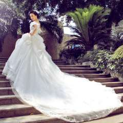 Urged 2013 slit neckline luxury big train sweet princess V-neck vintage wedding dress 848