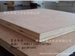 18mm Okoume plastic double- stick plywood, construction plywood plywood
