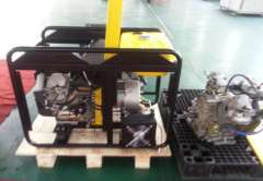 Diesel Engine Generator Assembly-LT11000ST3