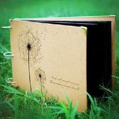 Korean version of the double-sided printing DIY adhesive-type album / black card retro albums | - dandelion