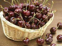 Supply cherry extract 17 Supplying