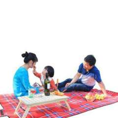 Outdoor play park flocking thickened picnic mat outdoor tents and mats