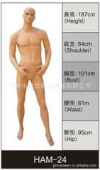 White Horse mannequin products manufacturers | abstract head male model | Guangzhou male model | garment human male model
