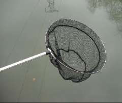 1.5 m dip net | folding | Aluminium landing net pole | triple dip net is easy to carry and use
