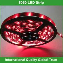 12v smd waterproof flexible led strips 5050