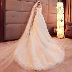 Ladies long tail wedding dress bride school department 2017 new autumn and winter Korean thin lace flower custom