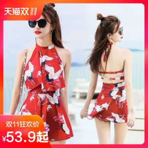 Swimsuit women's body skirt cover cover was thin conservative swimsuit small chest gather Korean sexy large size hot spring bathing suit